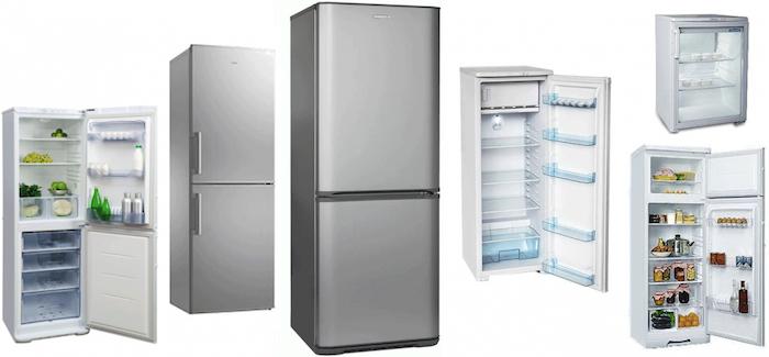 Холодильник Бирюса или Атлант: что лучше, сравнение параметров