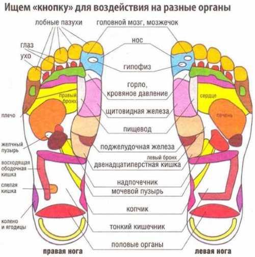 Как выбрать массажер для ног и ступней - Рейтинг лучших массажеров для ног